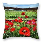 Red Corn Poppies At The Fence Throw Pillow