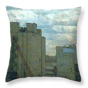 Red Crane Throw Pillow