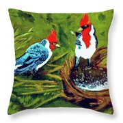 Red-crested Cardinal Birds #77 Throw Pillow