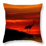 Red Crowned Crane At Dusk Throw Pillow