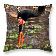 Red-crowned Crane Throw Pillow