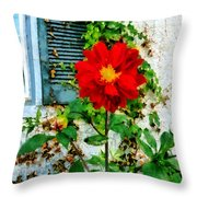 Red Dahlia By Window Throw Pillow