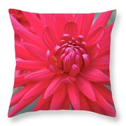 Red Dahlia Delight Throw Pillow