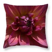Red Dahlia Macro Throw Pillow