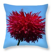 Red Dahlia Purple Dahlia Flower Art Prints Baslee Troutman Throw Pillow