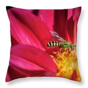 Red Dahlia With Wasp Throw Pillow