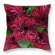 Red Daisies Bouquet Throw Pillow