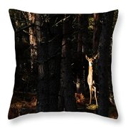 Red Deer In The Woods Throw Pillow