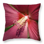 Red Disco Belle Hibiscus Painting Throw Pillow