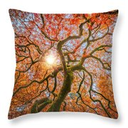 Red Dragon Japanese Maple In Autumn Colors Throw Pillow