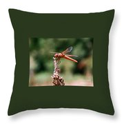 Red Dragonfly II Throw Pillow