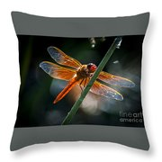 Red Dragonfly On Reed Throw Pillow