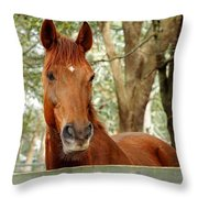 Red Ears Up Throw Pillow