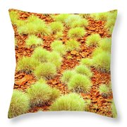 Red Earth And Spinifex 2am-111716 Throw Pillow