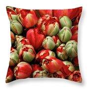 Red Elegant Blooming Tulips  Throw Pillow
