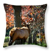 Red Elk Throw Pillow