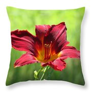 Red Escape Throw Pillow
