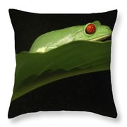Red Eye Frog Throw Pillow