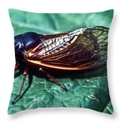 Red Eyed Cicada Throw Pillow
