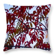 Red Fall Colors Throw Pillow