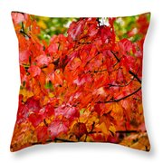 Red Fall Leaves Throw Pillow