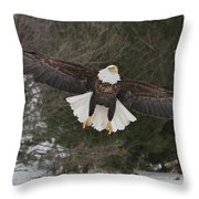 Red Feather Lift Off Throw Pillow