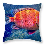 Red Fish Blue Fish Throw Pillow