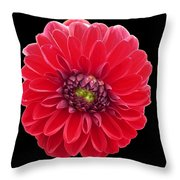 Red Fleur Throw Pillow