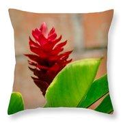 Red Flower IIi Throw Pillow