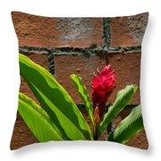 Red Flower Iv Throw Pillow