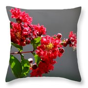 Red Flowers After The Rain Throw Pillow