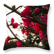 Red Flowers At Sunset Throw Pillow