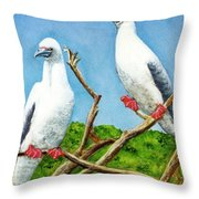 Red Footed Booby #255, Throw Pillow