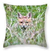 Red Fox Baby Hiding Throw Pillow