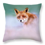 Red Fox In A Mysterious World Throw Pillow