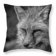 Red Fox In Black And White Throw Pillow