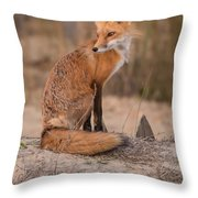 Red Fox In Pose Throw Pillow
