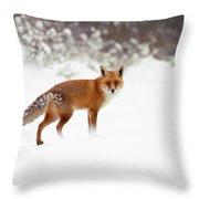 Red Fox In Winter Wonderland Throw Pillow