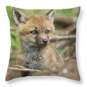 Red Fox Kit Throw Pillow