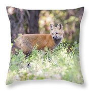 Red Fox Kit Looking For Mom Throw Pillow
