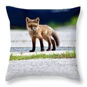 Red Fox Kit On Road Throw Pillow