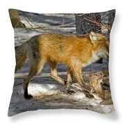 Red Fox Mommy And The Cutest Puppy Throw Pillow