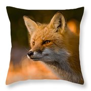 Red Fox Pictures 118 Throw Pillow