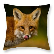 Red Fox Pictures 157 Throw Pillow