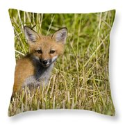 Red Fox Pictures 19 Throw Pillow