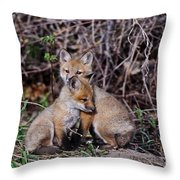 Red Fox Pictures 65 Throw Pillow