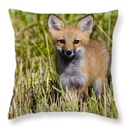 Red Fox Pictures 7 Throw Pillow