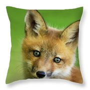 Red Fox Pup Throw Pillow