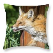 Red Fox Vixen On The Hunt Throw Pillow