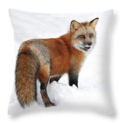 Red Fox Winter Throw Pillow